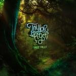 ⚡테일러 에익스티 Taylor Eigsti [Tree Falls] GSI Rec./2021