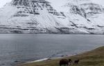 아이슬란드 - 북구의 차가운 투명함이 감도는 음악을 찾아 #2